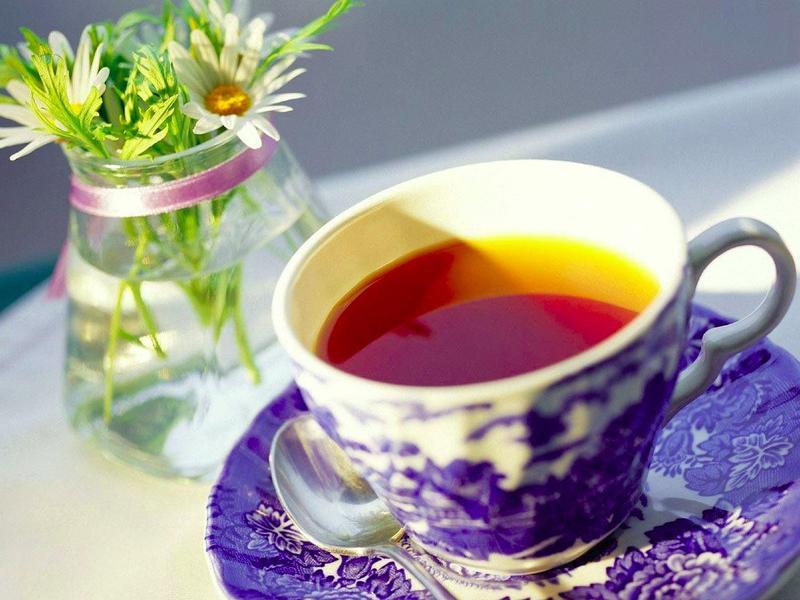 Никогда не пейте несвежесваренный чай. У японцев есть поговорка: Вчерашний чай хуже, чем змеиный укус. Холодный чай раздражает стенки желудка настолько, что китайцы считают его ядом.